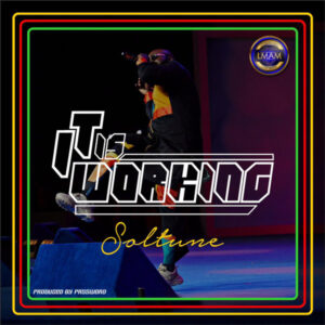 Soltune It's Working
