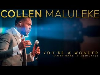 Collen Maluleke You Are A Wonder Your Name Is Medicine