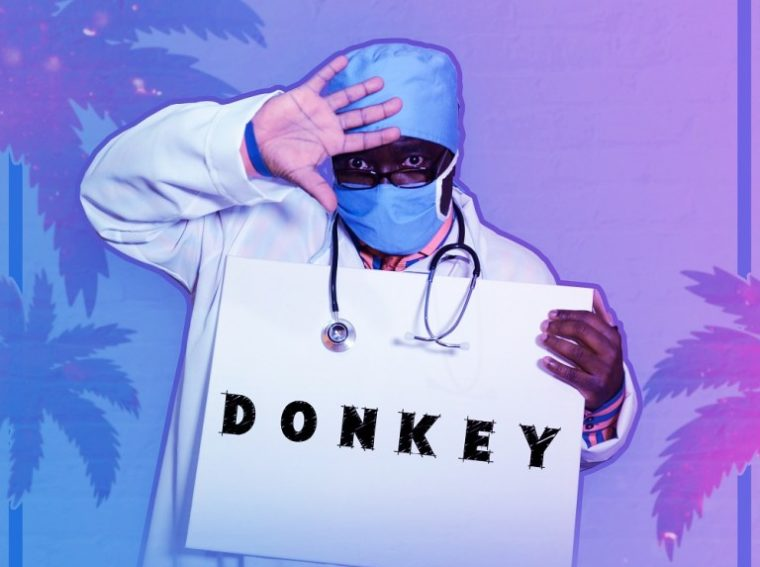 Dr Afrobuzz Donkey Mp3 Download