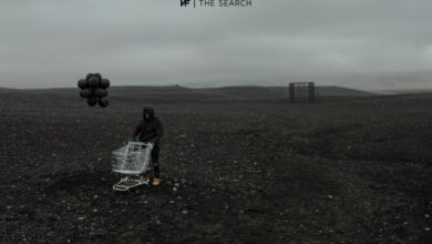 NF The Search Download
